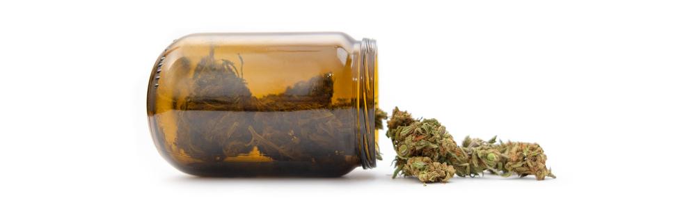 Банка с зелеными шишками марихуаны